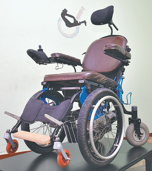 Picture of Leopard Wheelchair